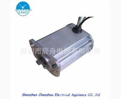 广东微型电动机