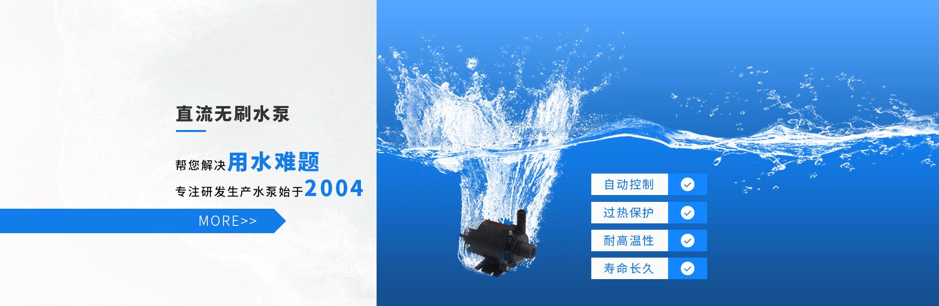 微型高压水泵