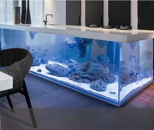 Fish tank hydroponics